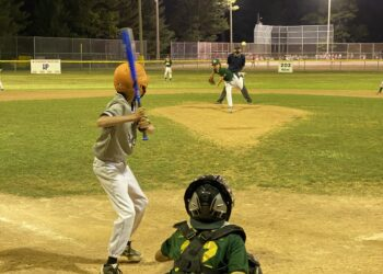 A photo of a pitcher throwing to a batter from a High Park Little League majors division game in August 2021